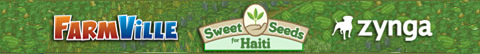 sweet seeds for haiti