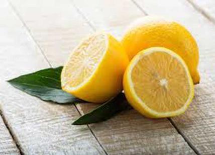 Diete Per Perdere Peso In Un Mese : Limone per dimagrire. ecco la dieta al limone. dimagrire 20 kg in