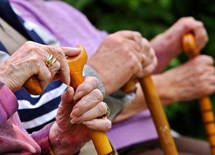 Analgesico anti-Alzheimer, restituisce la memoria: test positivi sui topi