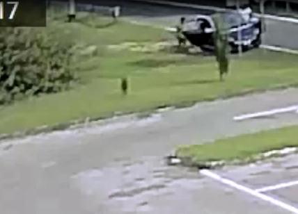 Abbandonano il cane ma il Comune pubblica il video: