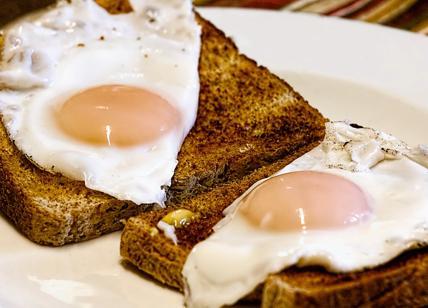 Dieta Settimanale Per Colesterolo Alto : Colesterolo alto i rimedi la dieta anti colesterolo e