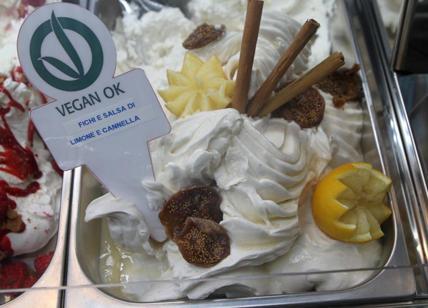 comprital vegan ijs2