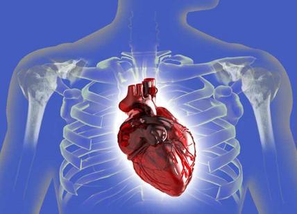 Capelli bianchi precoci  Cuore e malattie coronariche allarme rosso ... 23d03f6b0efc