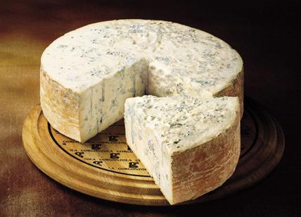 Stop a gorgonzola ea formaggi con muffe. Cina: problema non politico