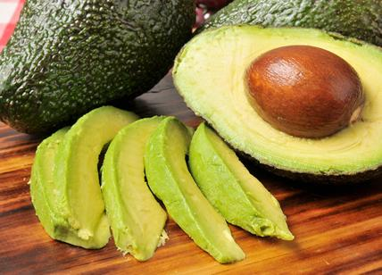 avocado per perdere peso come preparatori