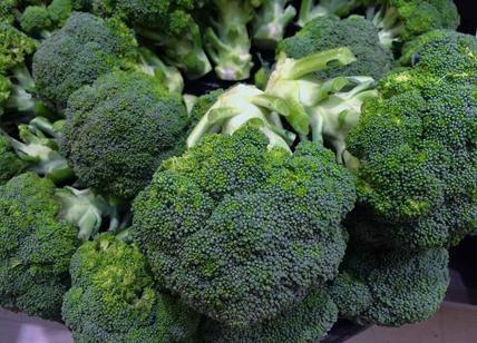 Diabete di tipo 2: broccoli aiutano a controllare la glicemia