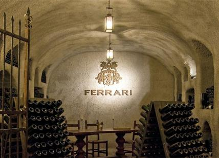 "Cantine Ferrari torna in vetta: nominate ""Sparkling Wine Producer of the Year"""