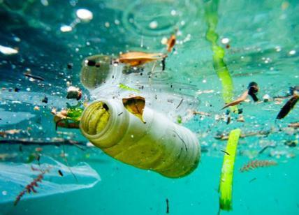Acqua, allarme globale presenza plastica