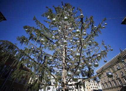 Albero Di Natale Roma 2019.Roma L Afa Regna Ma Raggi E Il Comune M5s Pensano Gia All Albero Di