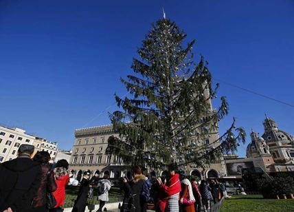 Albero Di Natale Roma 2020.Spelacchio Il Ritorno L Albero Di Natale Di Roma E Ancora Di Netflix Affaritaliani It