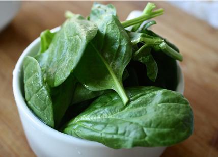 Spinaci ritirati dal mercato decalogo contro i rischi spinaci