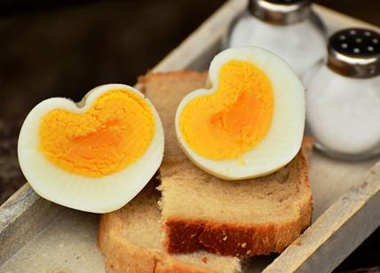 Ecco l'uovo sodo vegano, il brevetto di quattro studentesse di Udine