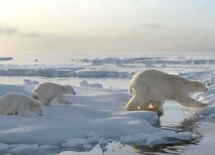 Earth Hour 2018: WWF uno spot d'autore, un video firmato Gabriele Muccino