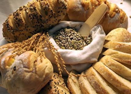 Diete Per Perdere Peso In Un Mese : Dieta per dimagrire: i carboidrati per perdere peso e dimagrire