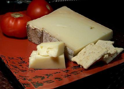 Formaggio fontina contaminato da Escherichia coli ritirato dal mercato