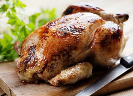 Mai lavare il pollo prima di cuocerlo, batteri si diffondono - Terra & Gusto