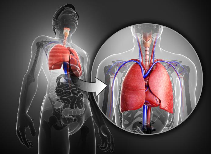 Escupir pieza de pulmón con tos, hombre muerto de 36 años.
