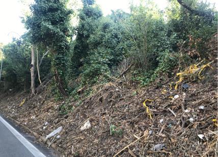 """Discarica Ardeatina, Comune di Roma """"zozzone"""": via le piante, escono i rifiuti"""
