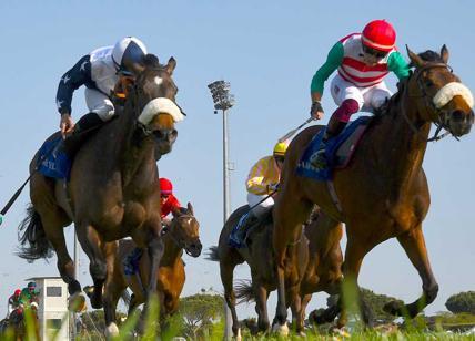 Capannelle, domenica Roma galoppa con i purosangue arabi del Dubai Day