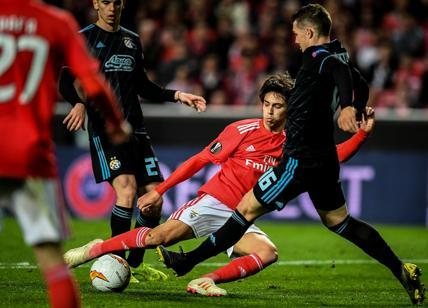 Rui Costa: