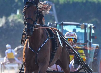 Calendario Corse Capannelle.Doppio Gran Premio Per Il Trotto Romano A Capannelle Sabato