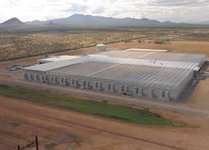 "Bayer apre una ""serra intelligente"" in Arizona: la Marana Greenhouse"