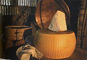 Modena Parmigiano